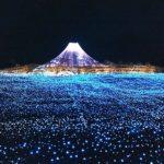 クリスマスに楽しみたい!東海のイルミネーション おすすめは?日本最大級のスケールなばなの里は?