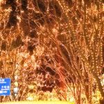 クリスマスに楽しみたい!仙台・東北のイルミネーション